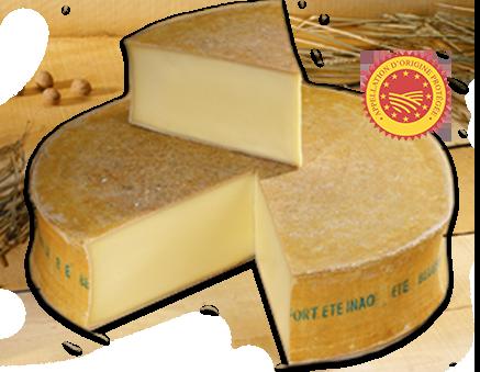 beaufort - Les Fromages de Savoie